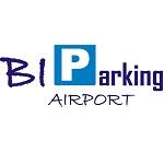 biparking-torino